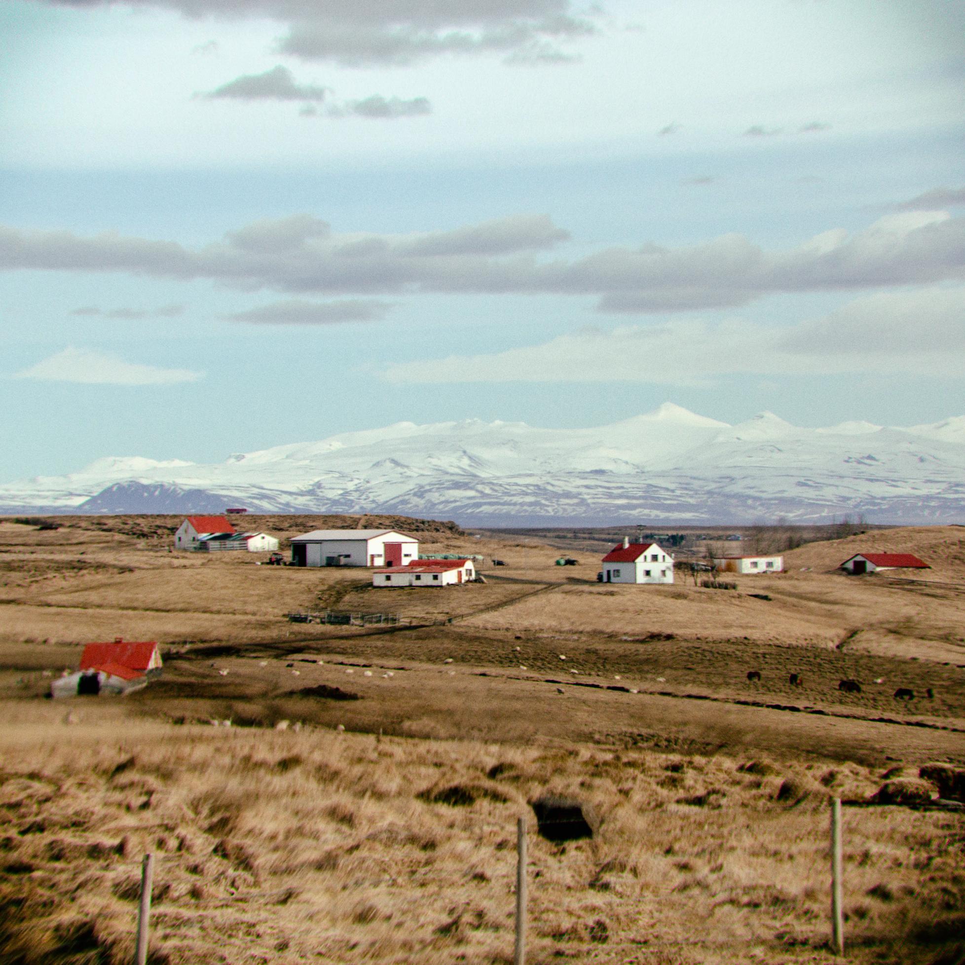 iceland houses-31.jpg