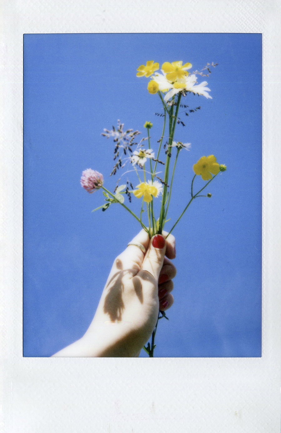 mini+instax+flowers+sky.jpg