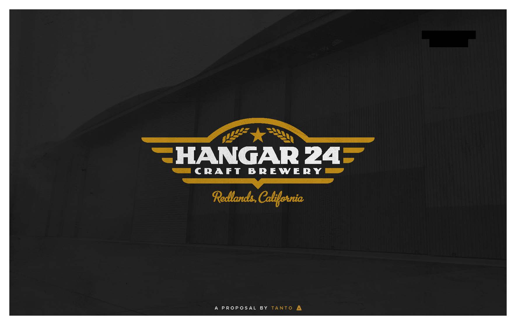 Hangar 24 - Proposal_Redacted_Page_01.jpg