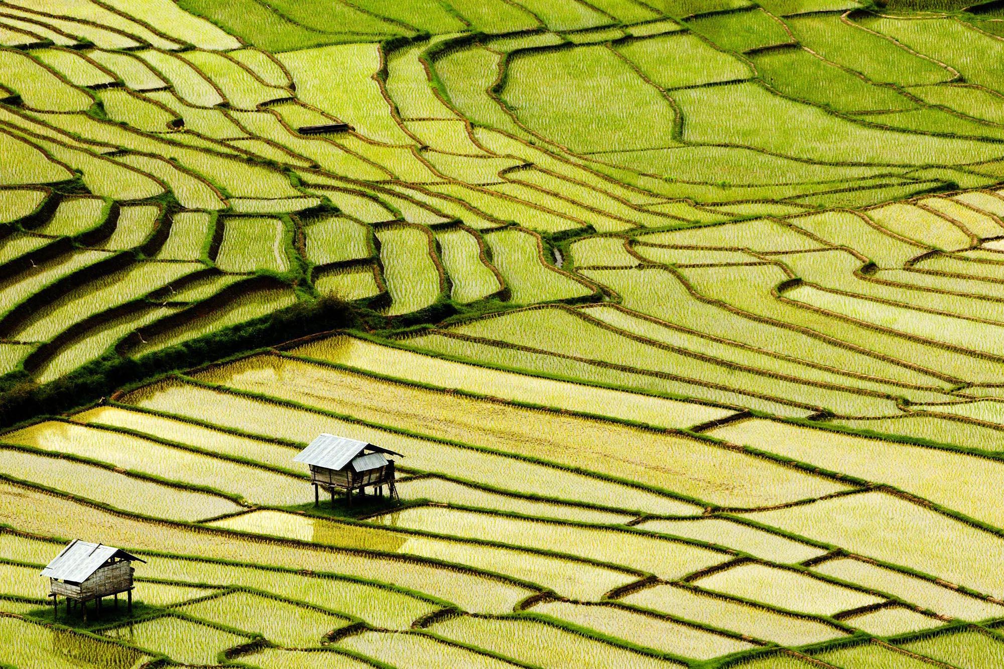 Bon Mai village, Thailand
