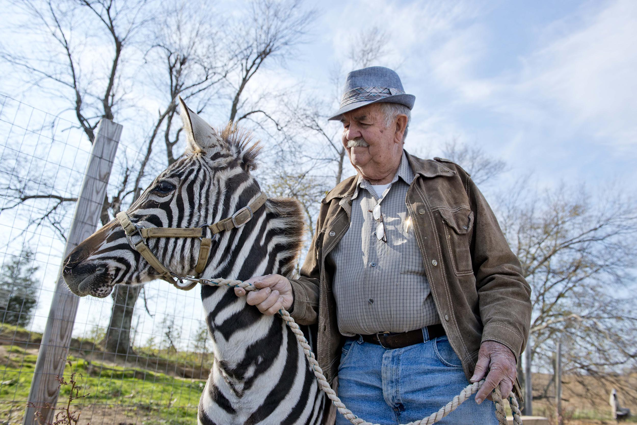 Clarence Lee Shirrell and Stripes, the zebra