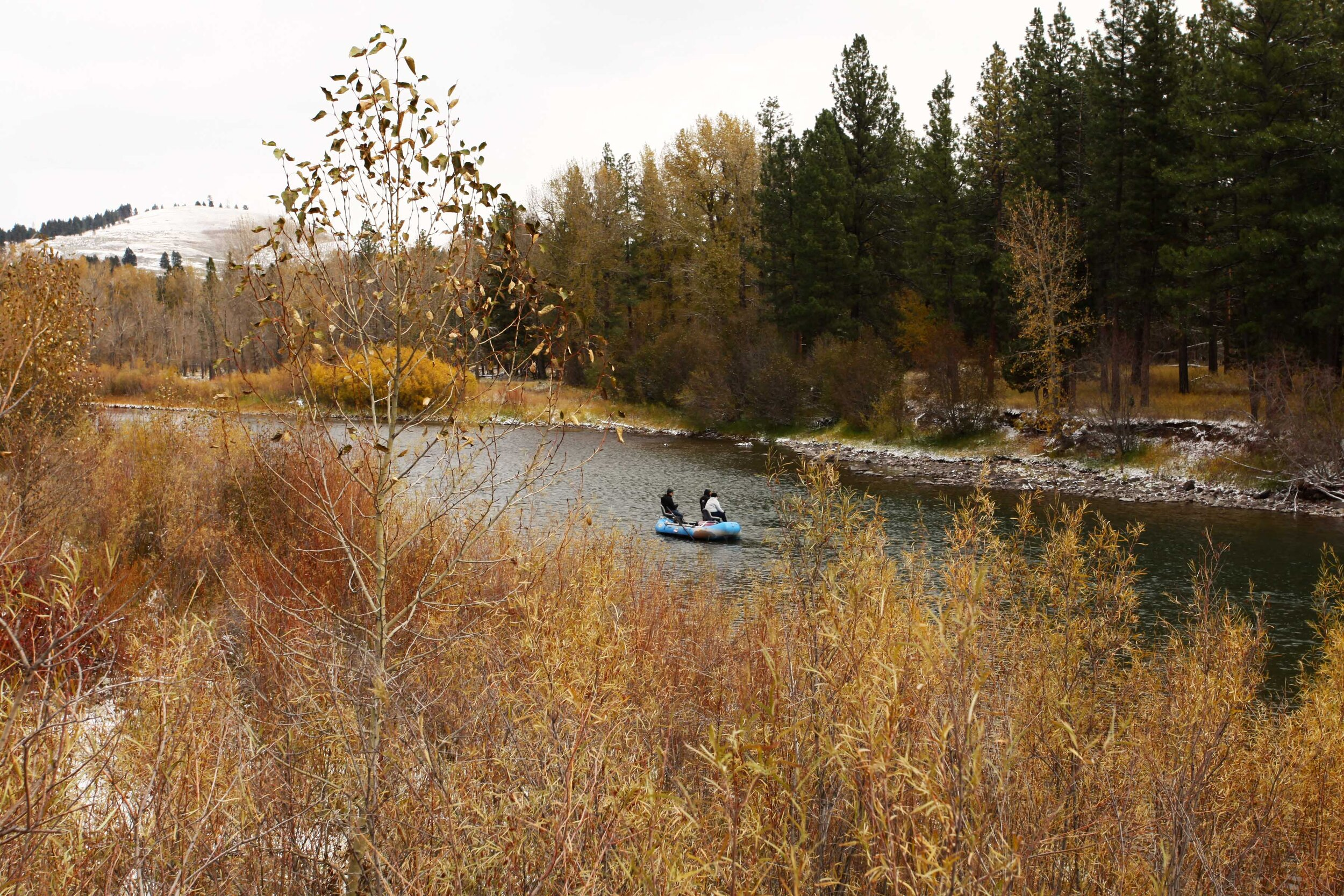Fly fishing on the Blackfoot.