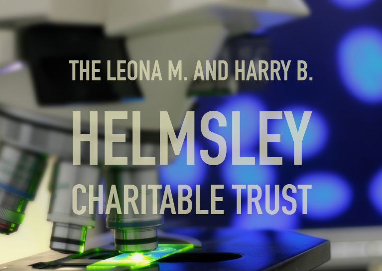 Helmsley button.jpg