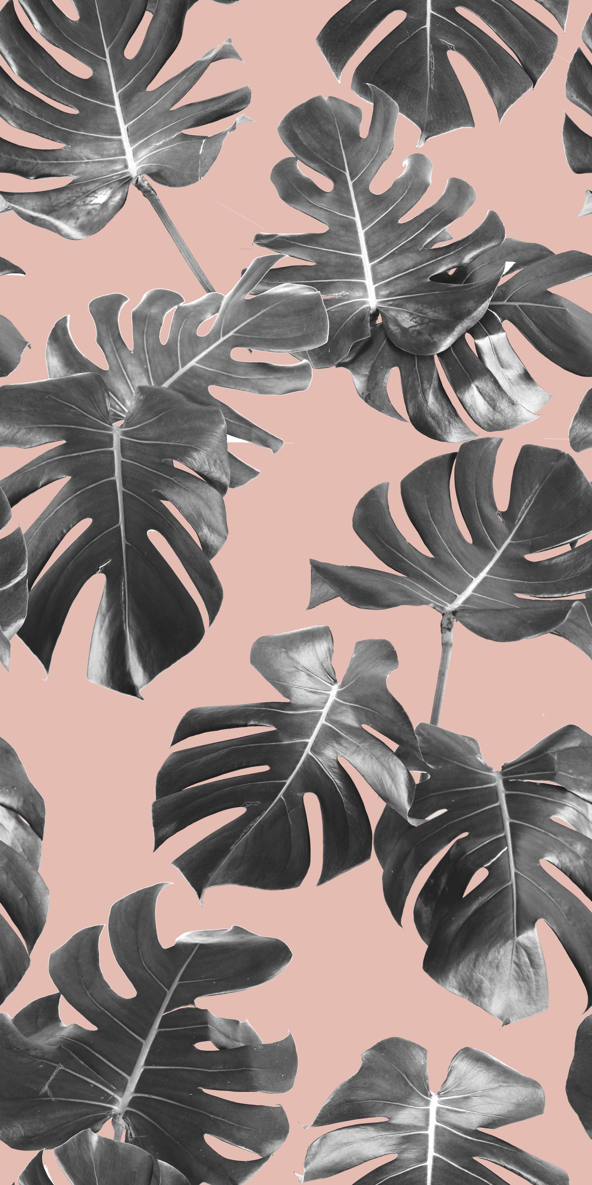 Monstera Leaf Pattern_TILE_BLUSH.png