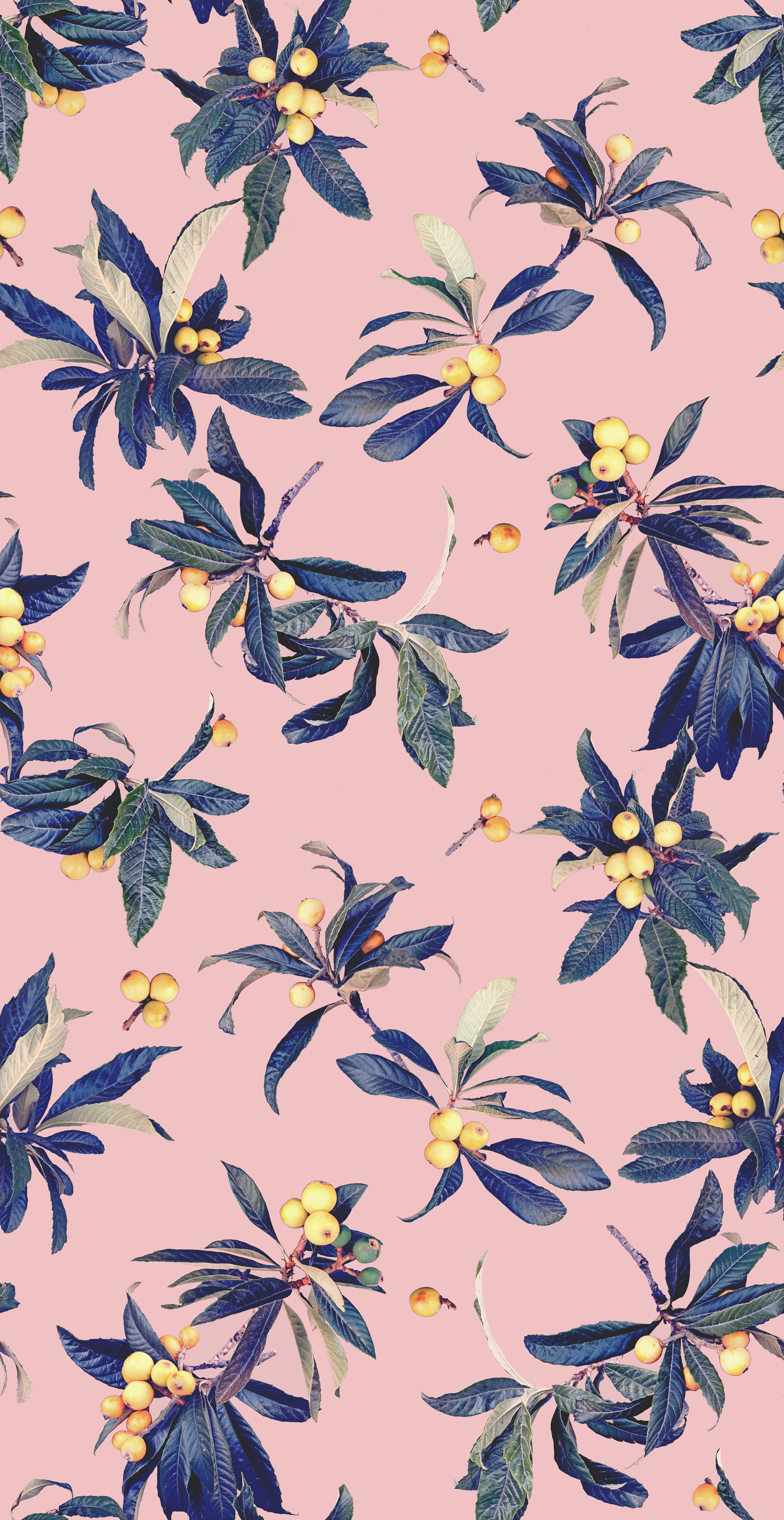 Loquat_Love_TILE_FINAL_pink_02_WEB.jpg