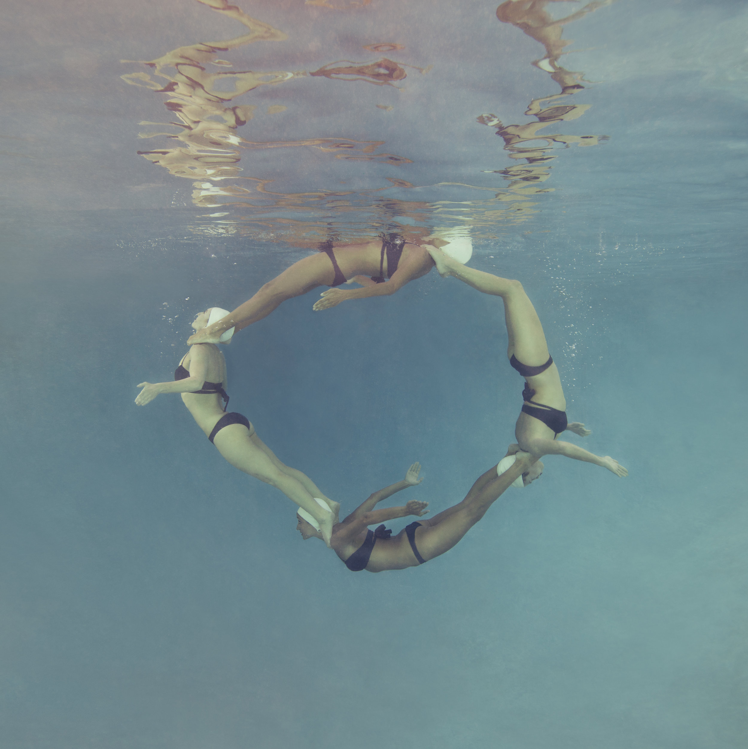 Dolphin-Circle.jpg