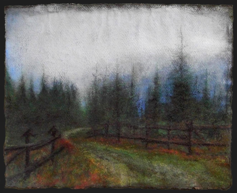 forest in beskidy.jpg