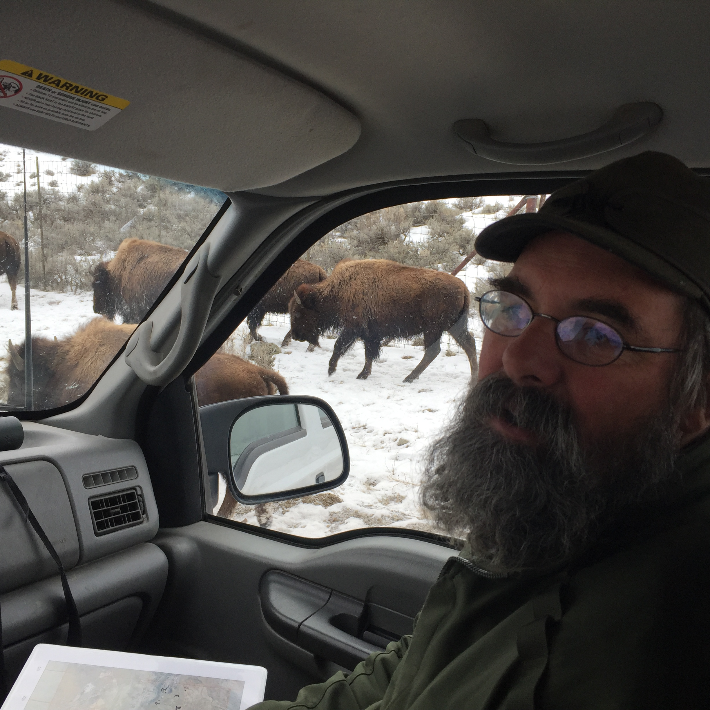 Rick Wallen is the Bison Project Leader at Yellowstone National Park.