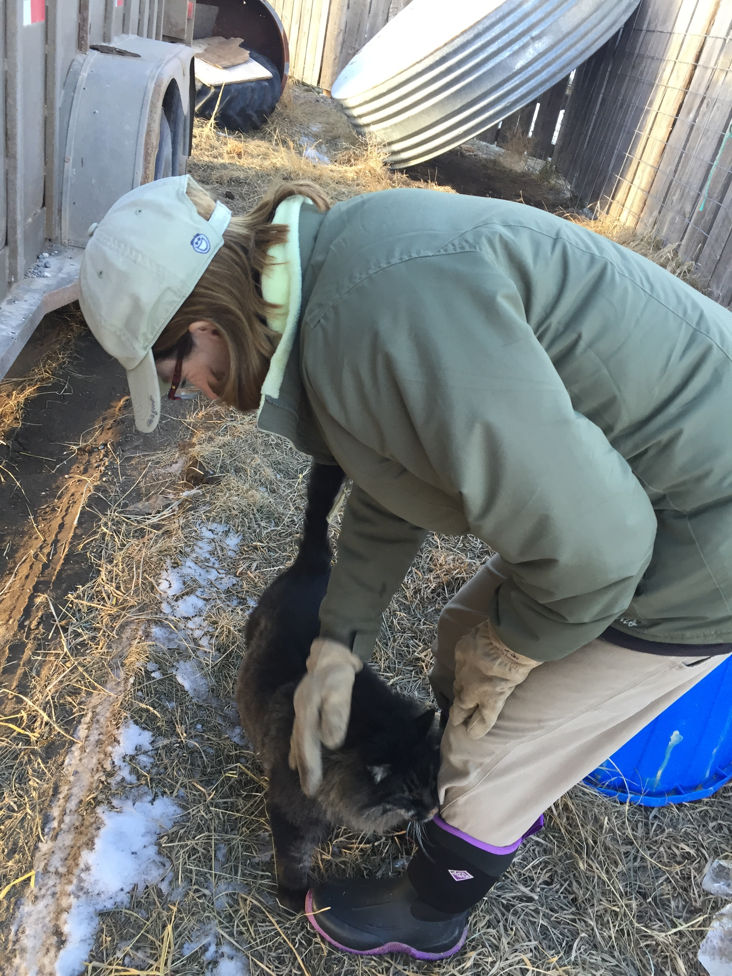 Kinke is a major animal lover. Everywhere she goes on the ranch, she is talking to and interacting with animals.