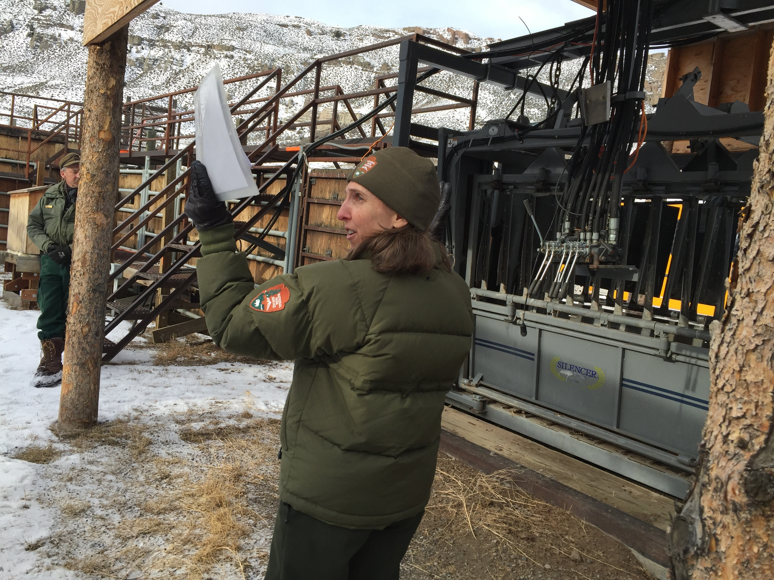 Jody Lyle of Yellowstone National Park led a tour of the Stephens Creek facility on January 20. Behind her is the squeeze chute where bison are tagged and tested before being sent to slaughter.