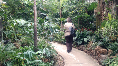 Mom enjoying her second walk through the Conservatory.