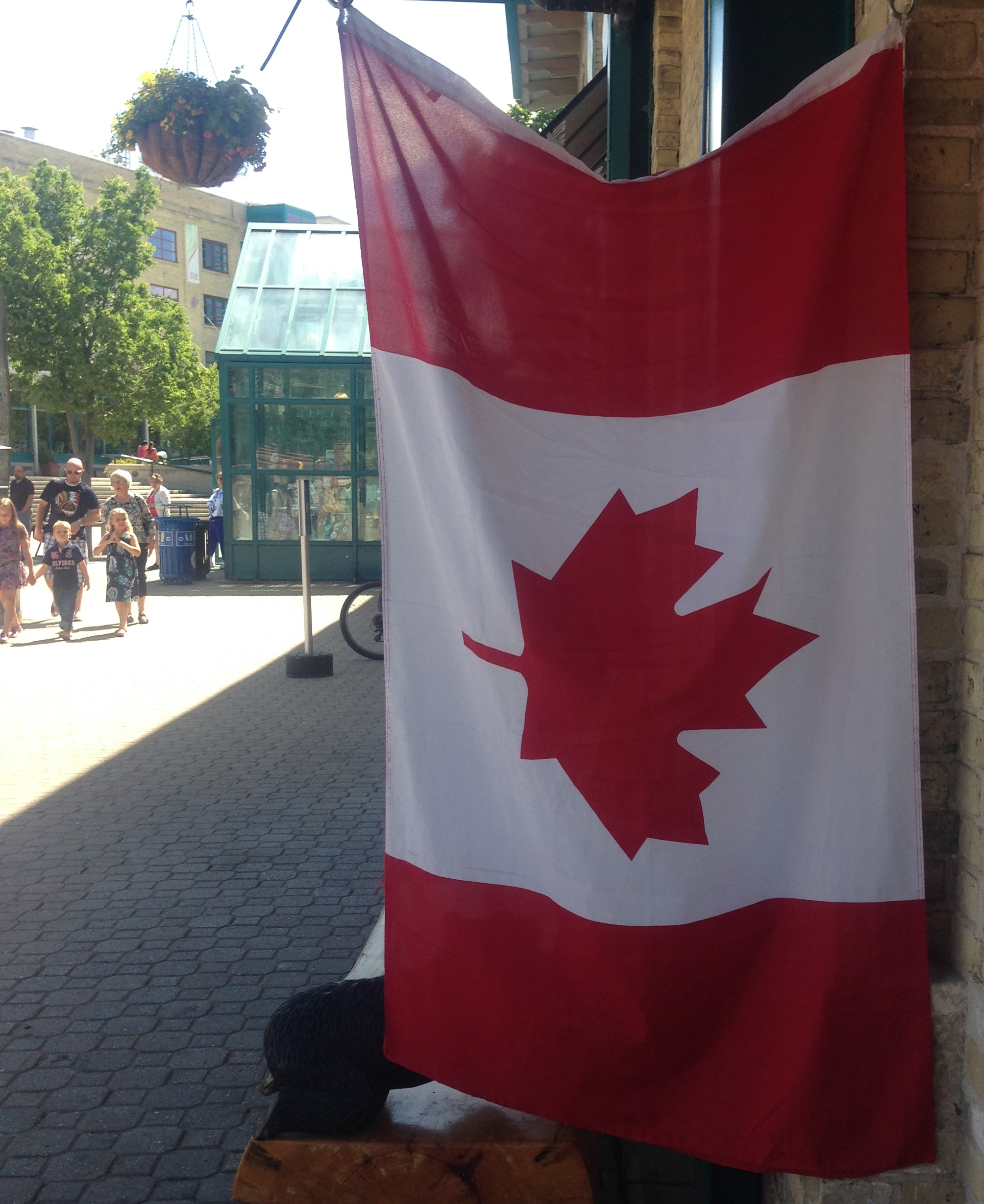 Canadian flag I encountered on my way back home.