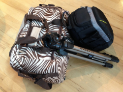 This is what I brought with me to Africa in 2014. This bag is bigger than what I usually travel with but it does convert to a backpack, which I like.The additional items I brought on this trip were a camera & bag, tripod, binoculars and international power adapters. I don't usually bring those things with me but hey, this was a safari!