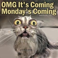 OMG_Monday.jpg