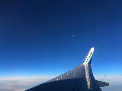 WestJet_wing_Feb1517.jpg