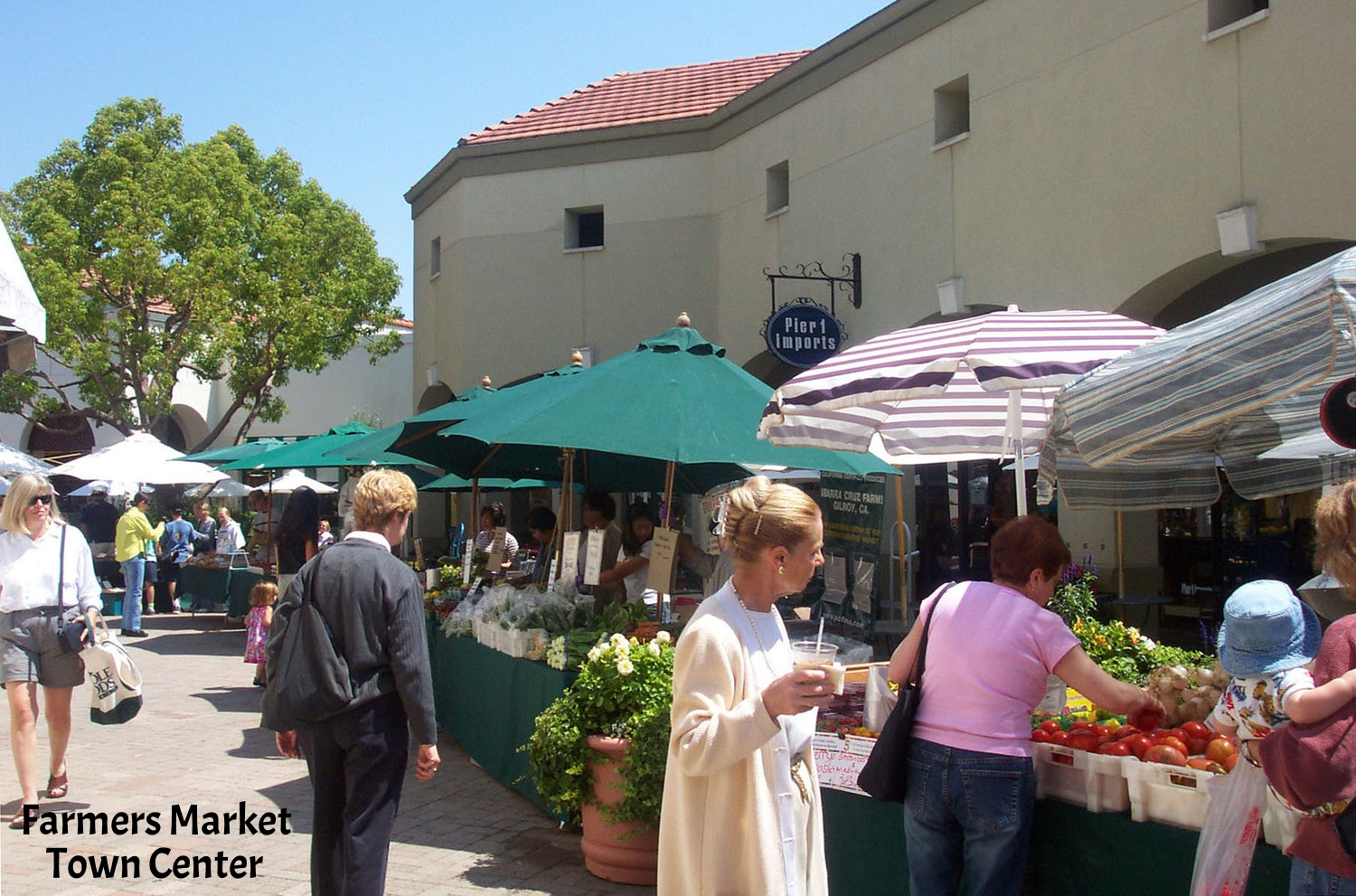 Farmer's Market at Twn Ctr.jpg