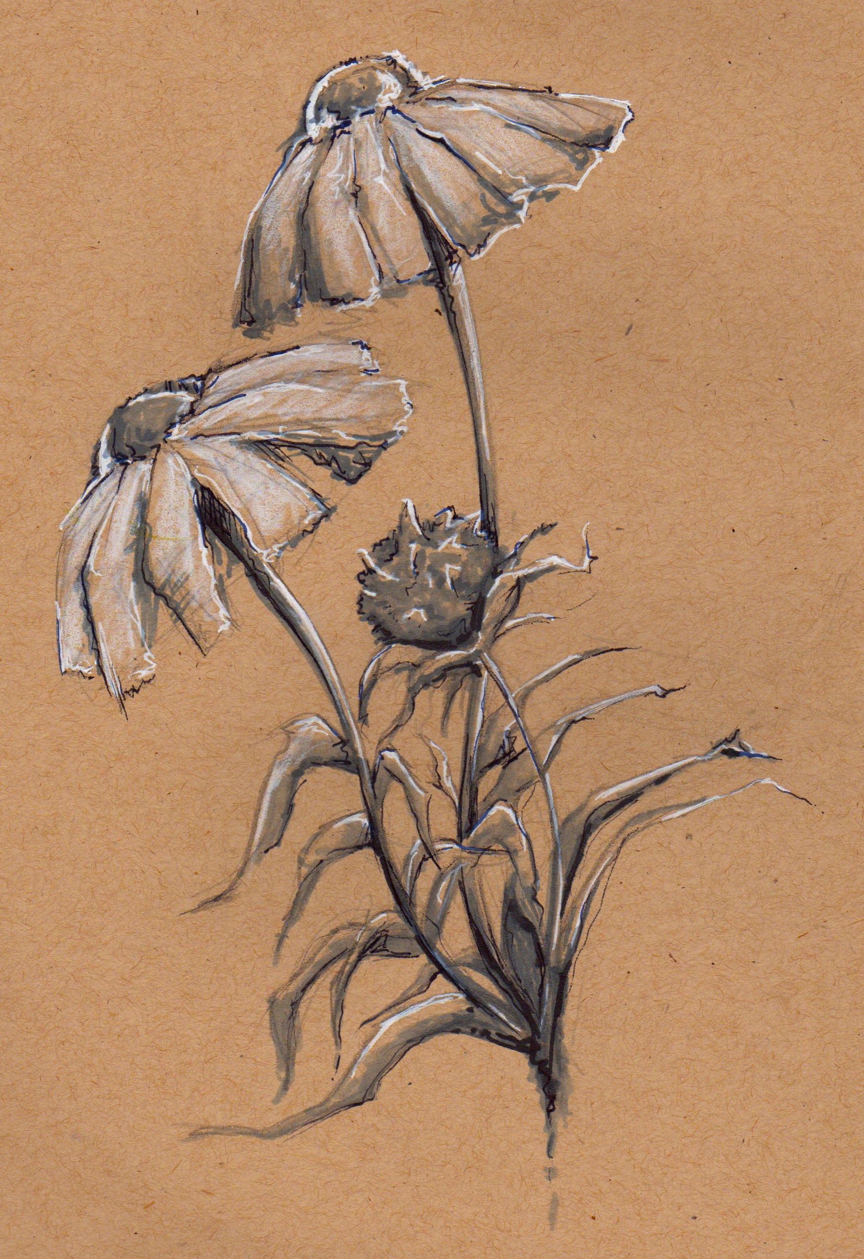 - Yellowstone Flowers Arm Tattoo -