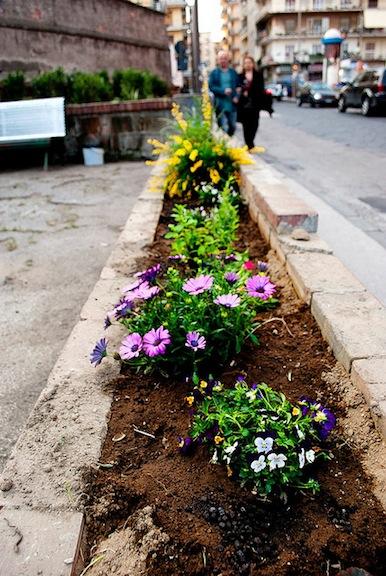 italy garden-smartcitymemphis-com.jpg