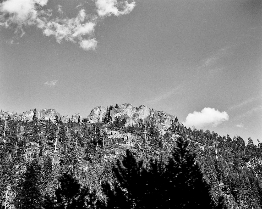 Northern California. March 2014 {Scanned b&w 120mm film negative}.
