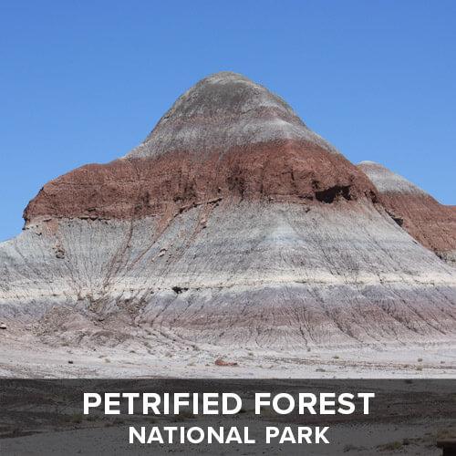 thumb_PetrifiedForest.jpg