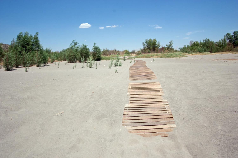 Boardwalk along the sandy shores of the Rio Grande