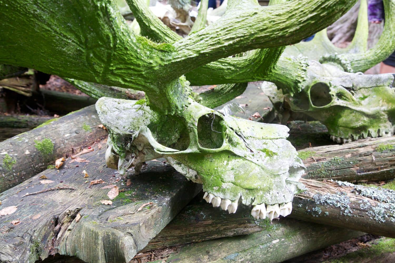 Skulls_9816.jpg