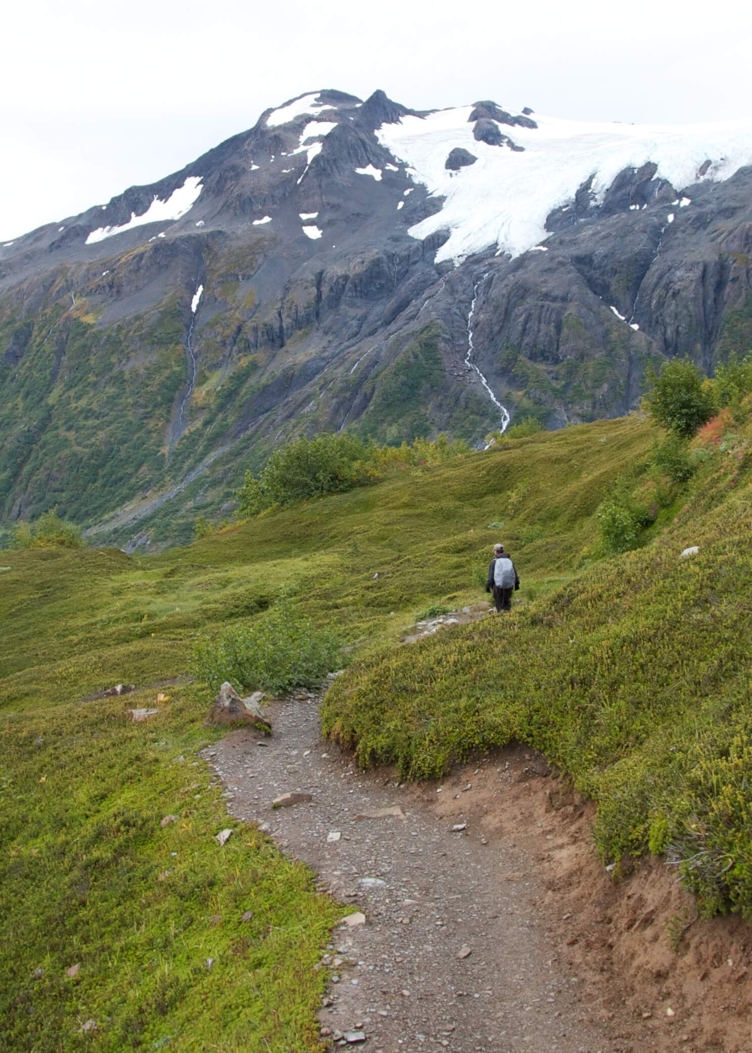 Trekking the Harding Icefields Trail during park visit  #29 .