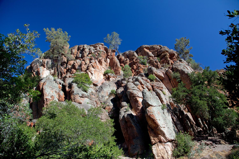 Trailside terrain