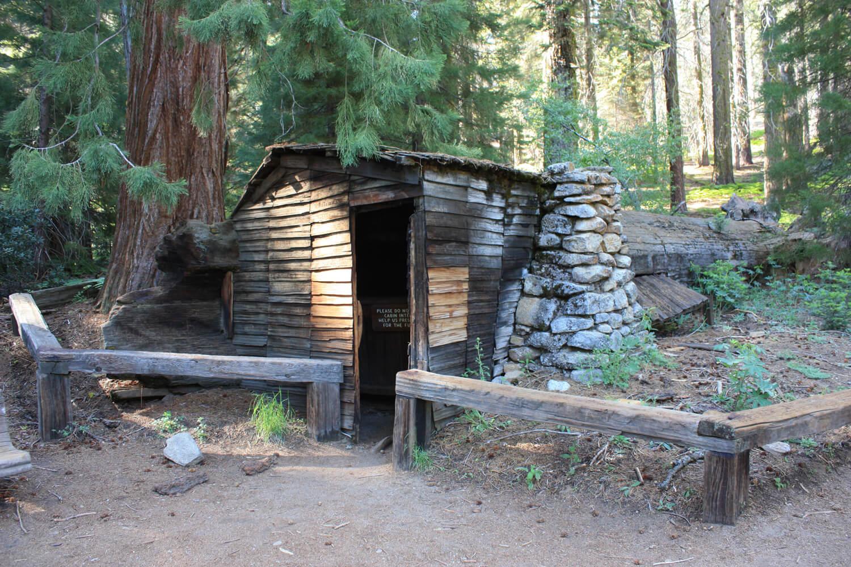 "Tharp Log...a genuine ""tree house!"""