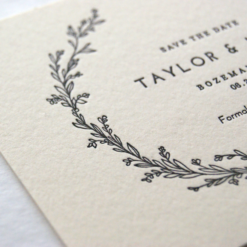 taylor2.jpg