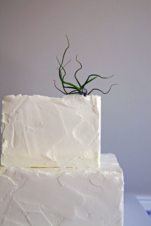 sweet-wedding-cake10.jpg