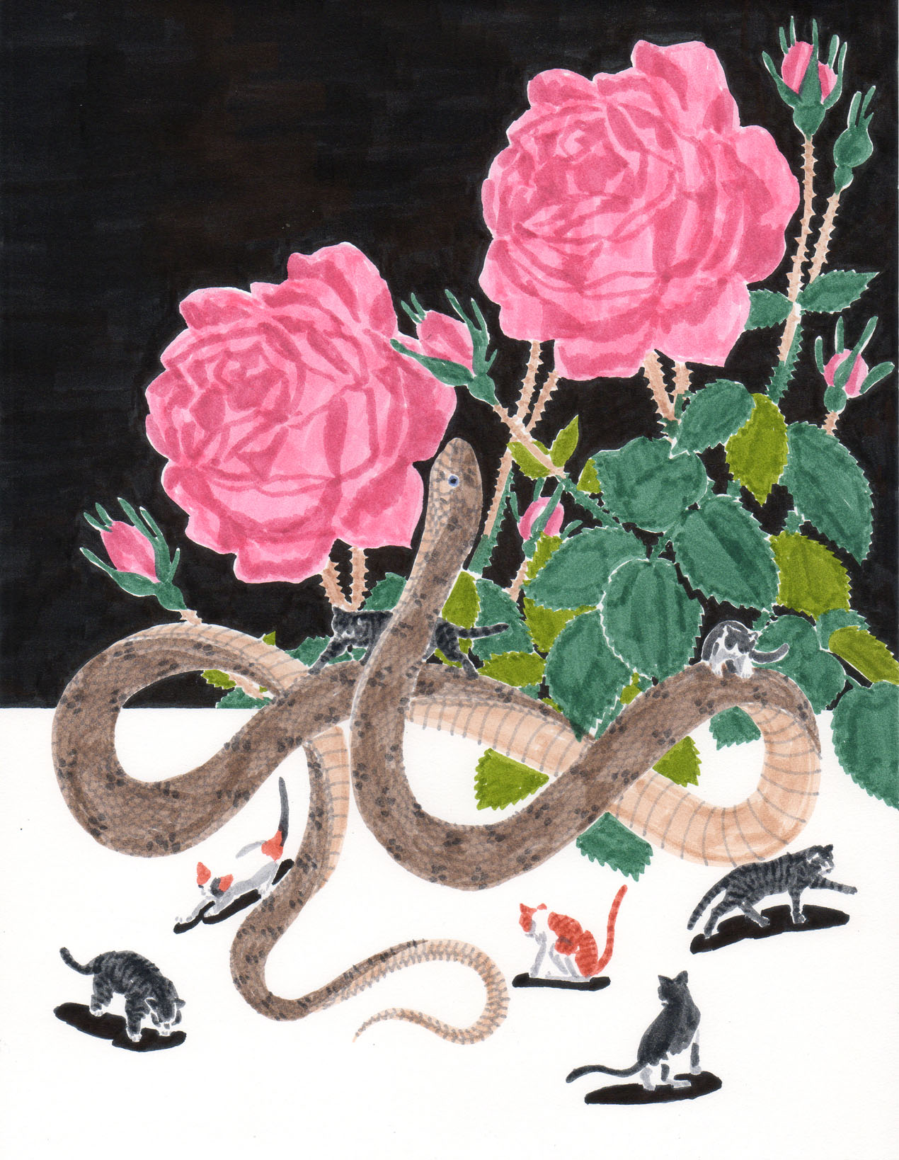 Grant Huang.  Snake, Roses, Seven Cats. Marker on paper. 12 inches x 14 inches framed. 2013.