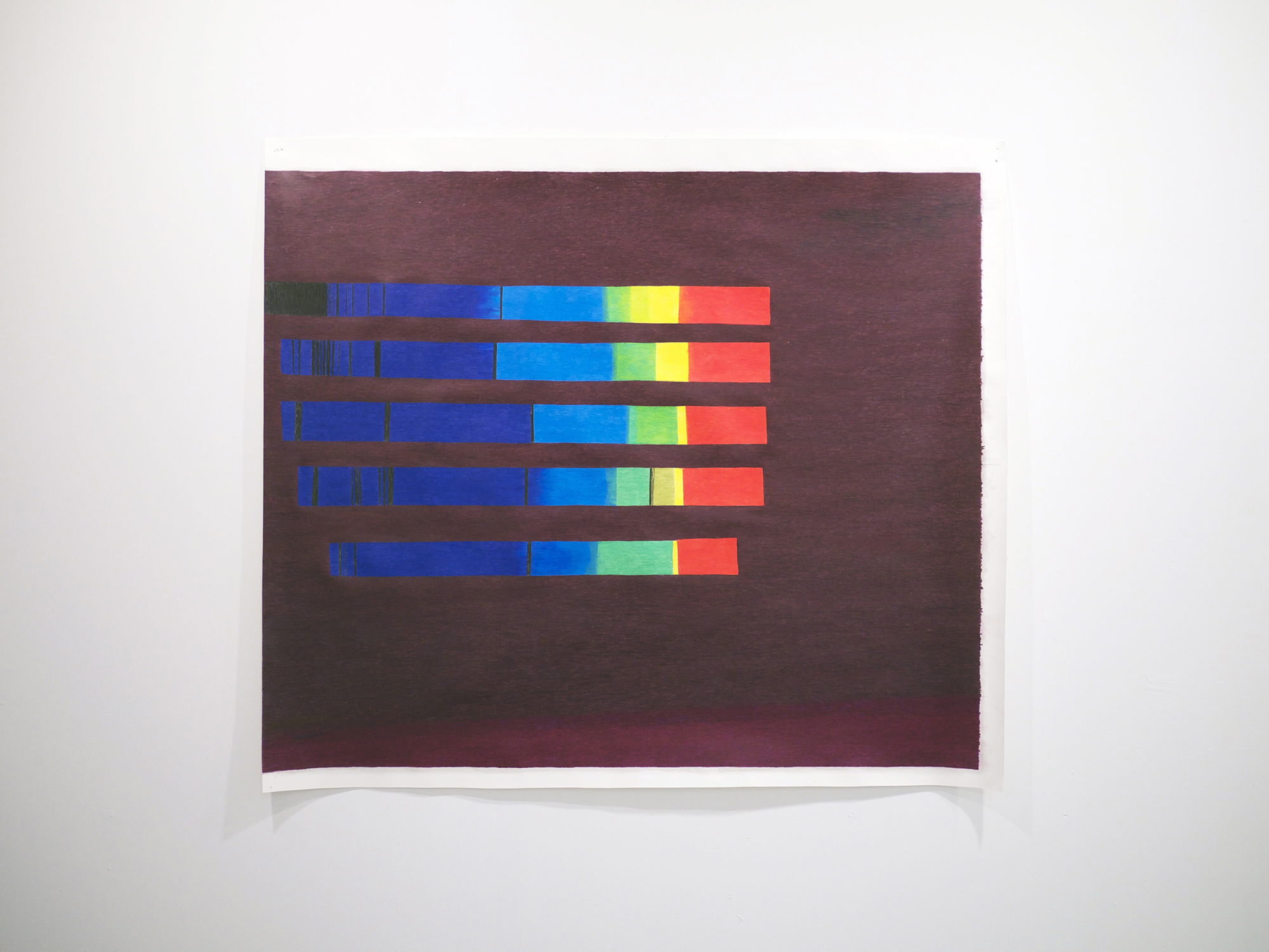 Carrie Gundersdorf  Five Spectra of Vega  Colored pencil and watercolor paper  44 inches x 50 inches  2013