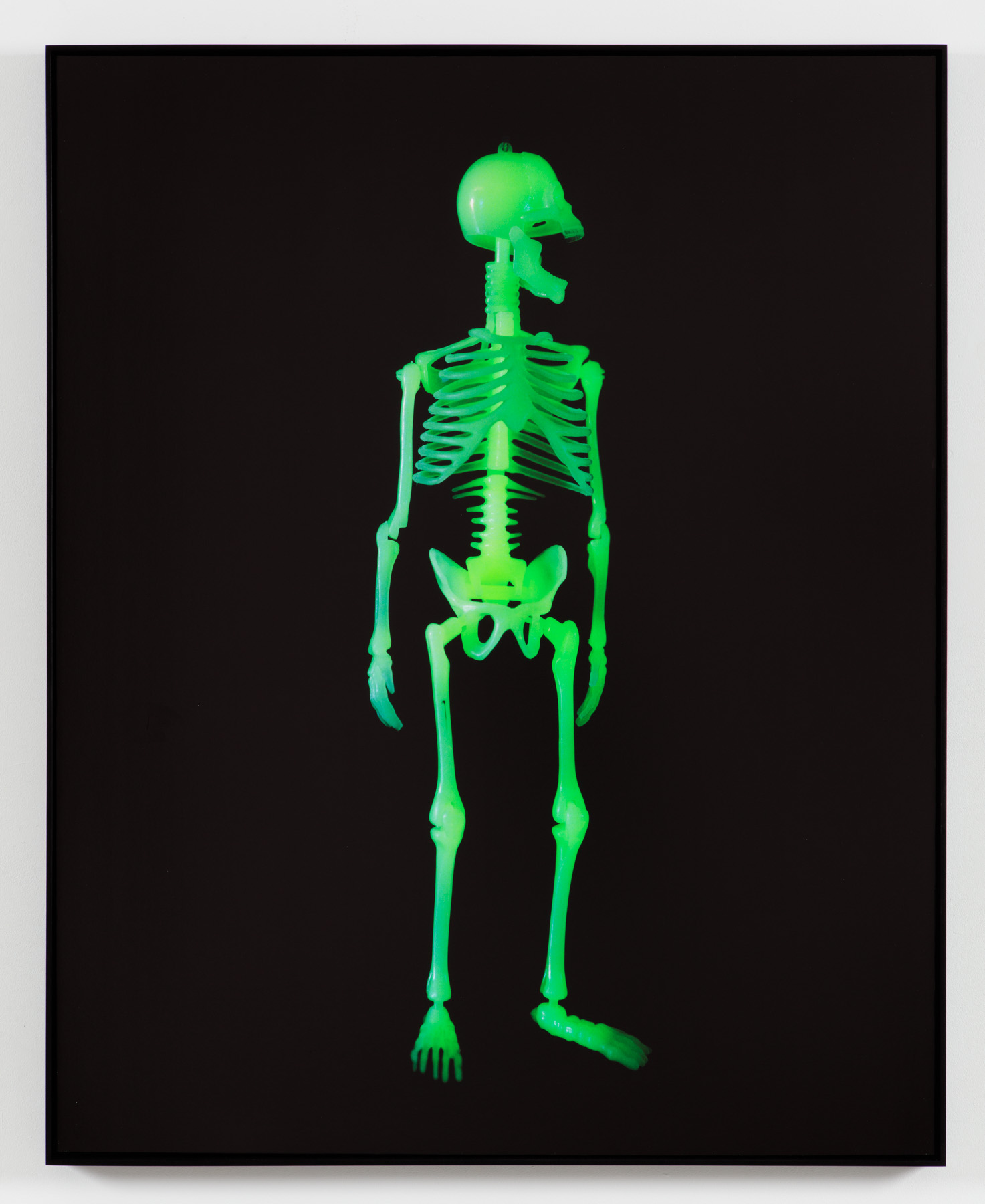 Inner Glow   Archival Inkjet Print  40 x 50 inches  edition of 3 + AP  2016