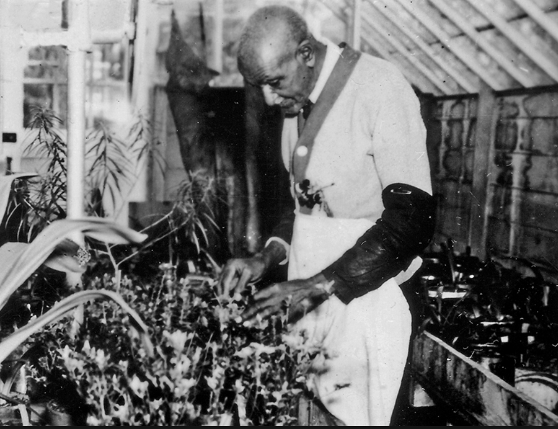 George Washington Carver .png