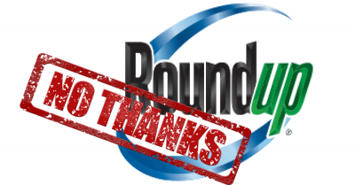 roundup_logo_no_thanks_stamp_1000x523.png