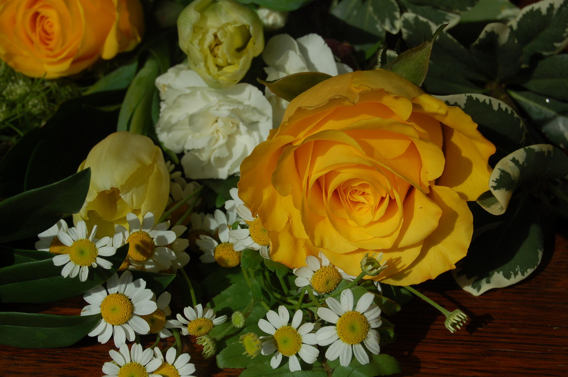 2005-10-04 12.01.09.jpg