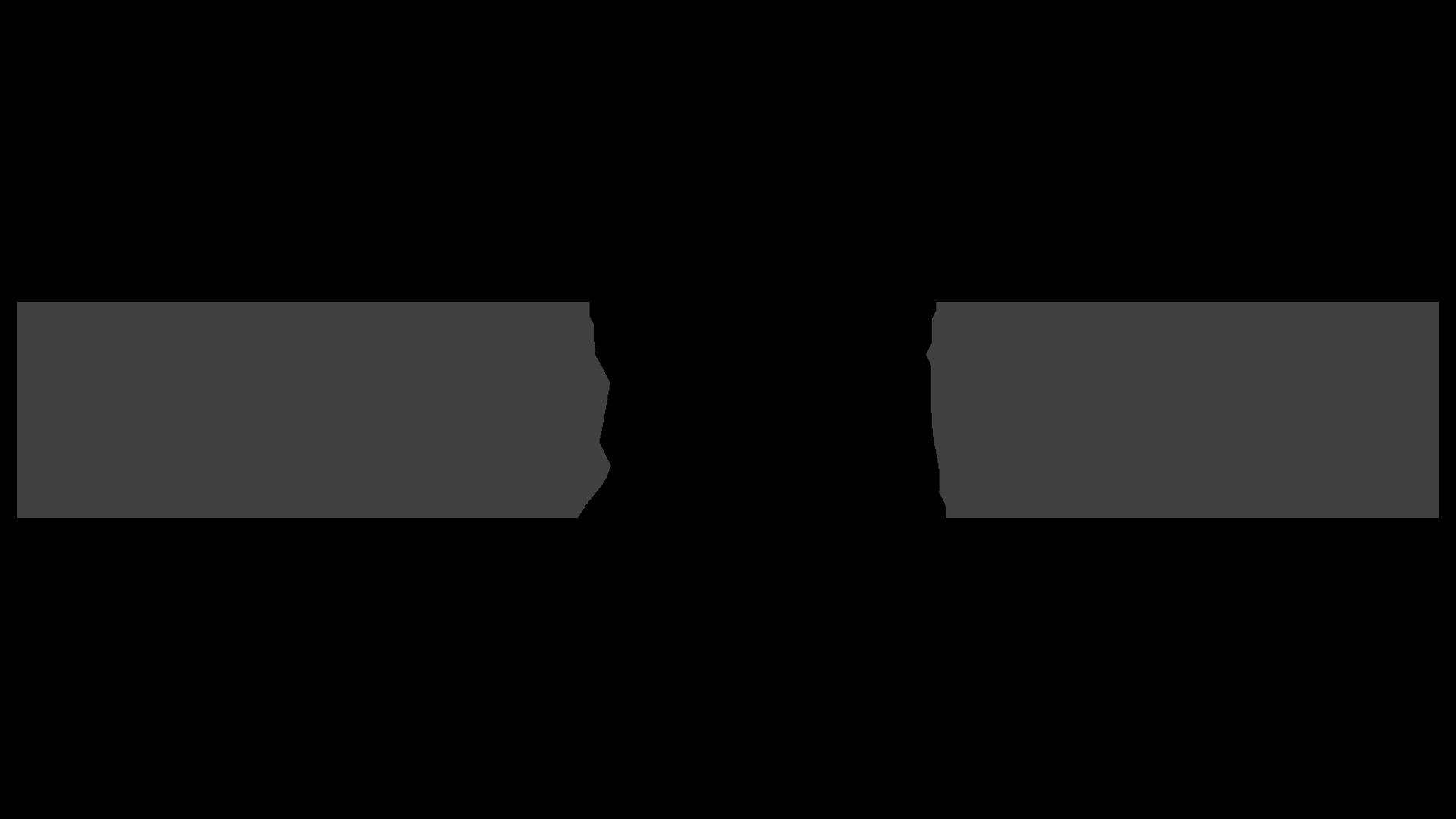 Food Lion Website Final.png