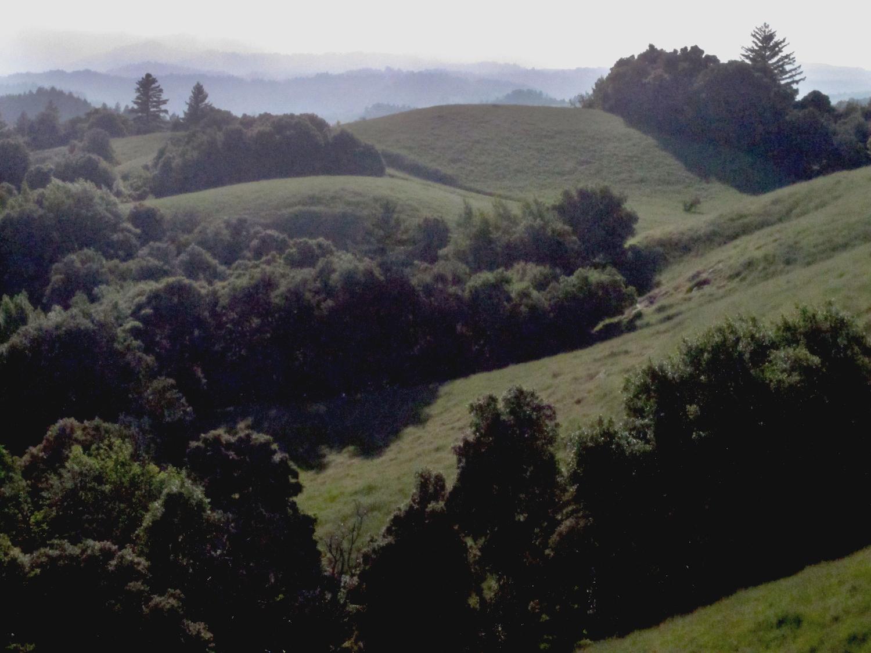 Ridge Overlook.jpg