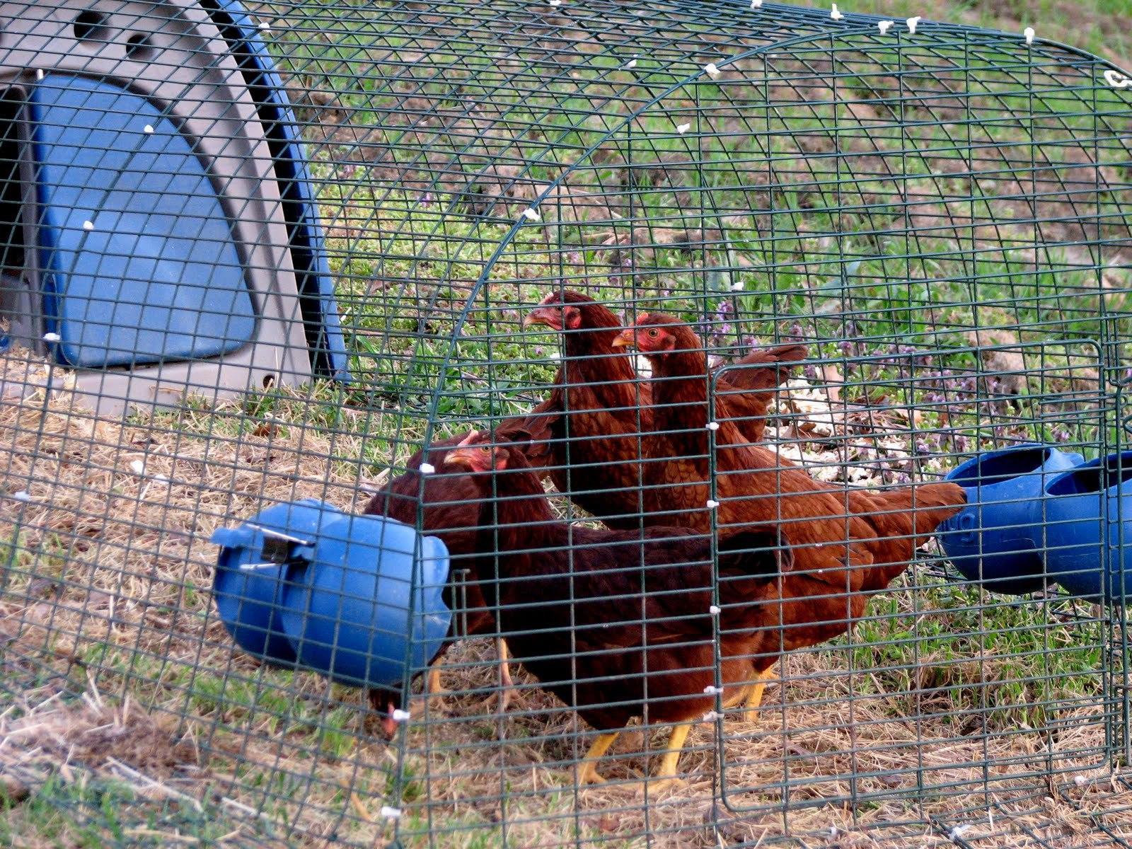 Farming Stinks