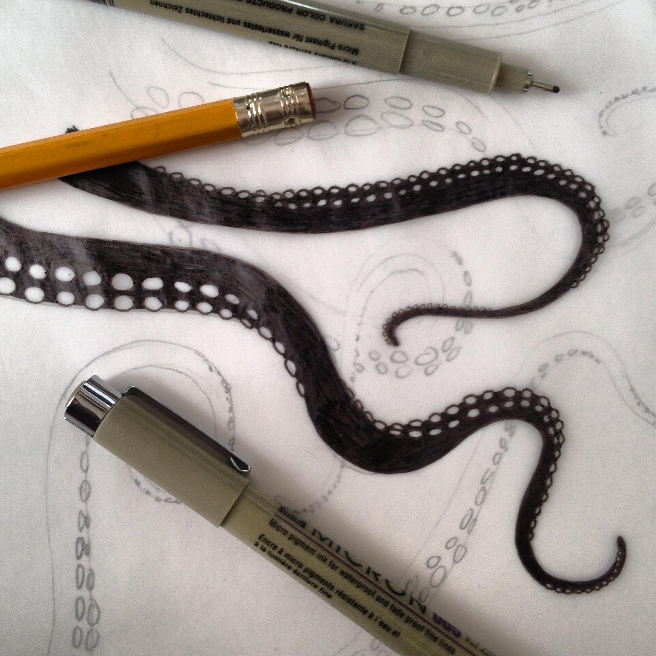 octopus.JReynolds.jpeg