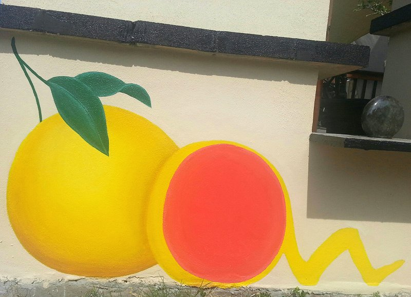 grapefruit-mural-ana-livingston-day-three-panel-two-clearwater-florida