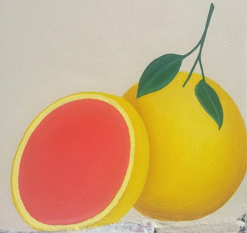 day-four-grapefruit-mural-panel-one-ana-livingston-fine-artist-clearwater-florida.jpg
