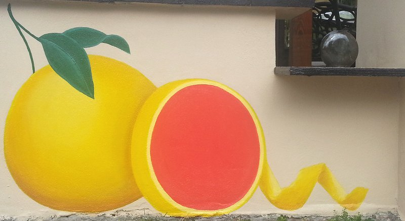 day-four-grapefruit-mural-panel-two-ana-livingston-fine-artist-clearwater-florida.jpg