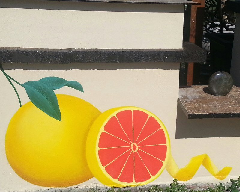 Second panel of The Grapefruit Mural