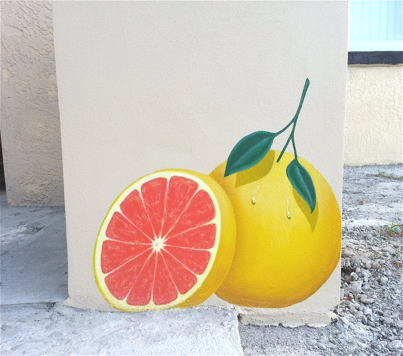 First panel of the Grapefruit Mural. The owner is in the midst of renovations; these walls will look wonderful once grass is put in!