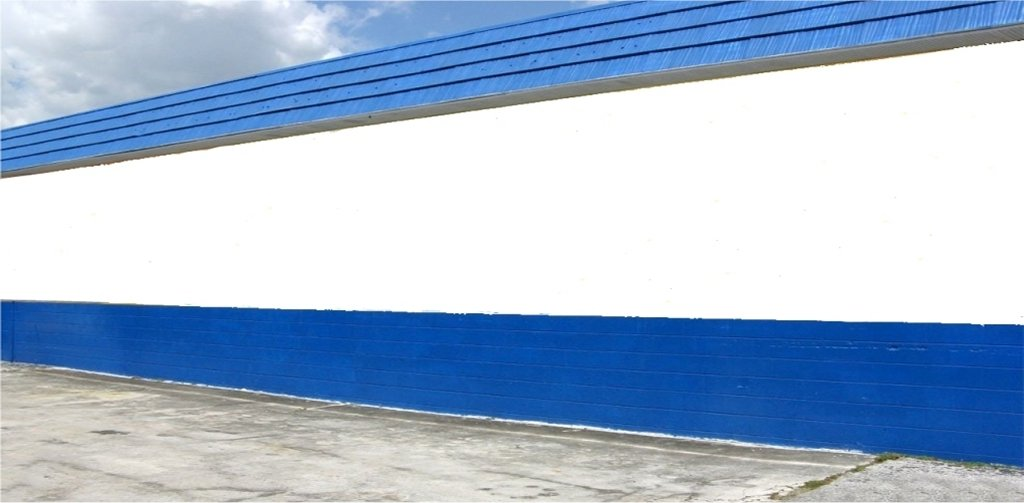 BEFORE : 55' wall located on the west side of Honka Automotive, 1266 Court Street in Clearwater, FL.