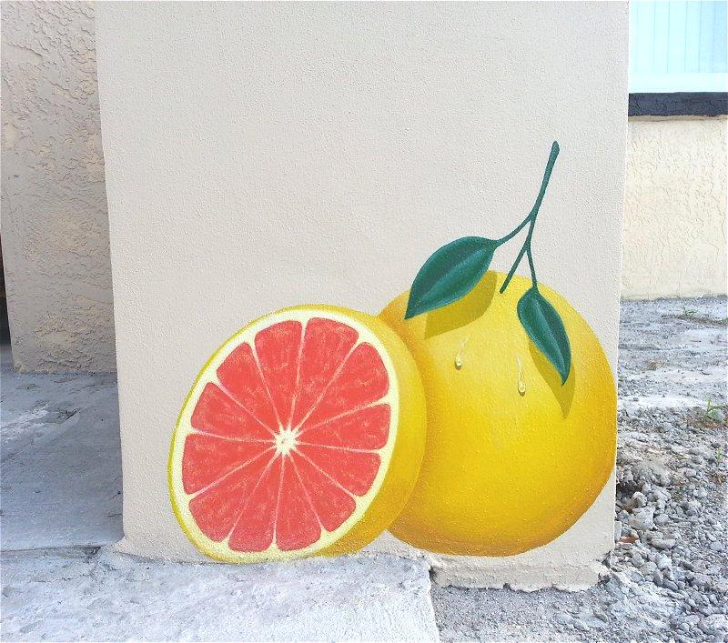 """""""Grapefruit Mural"""", Exterior Mural, Panel One"""
