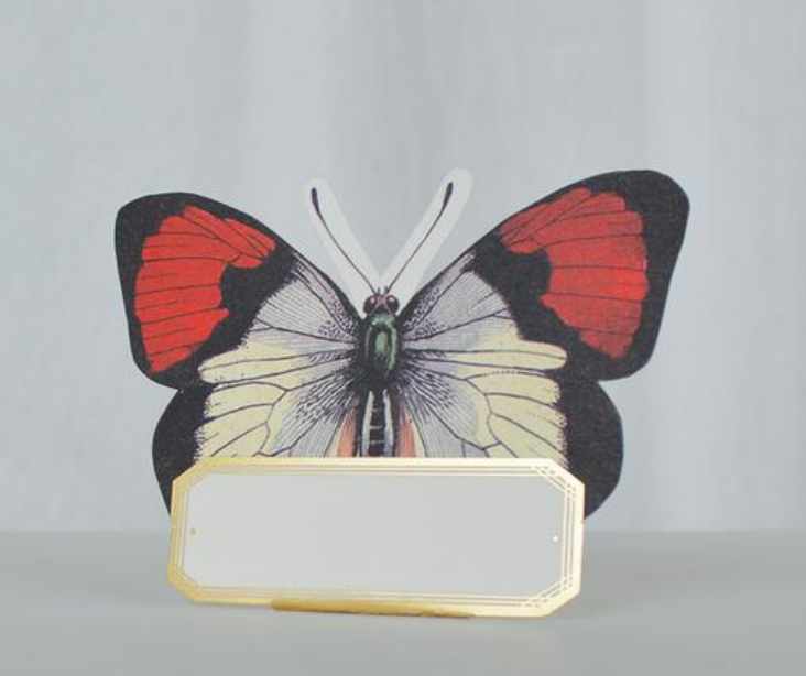 Die cut Butterfly Placecards $9 for 12 - Pair with paper plates and call it a day.