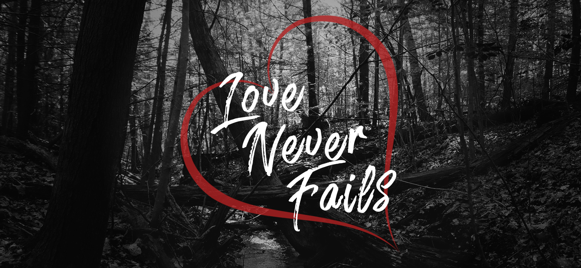 Love Never Fails banner.jpg
